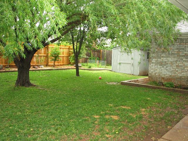 View of the back yard with the out building